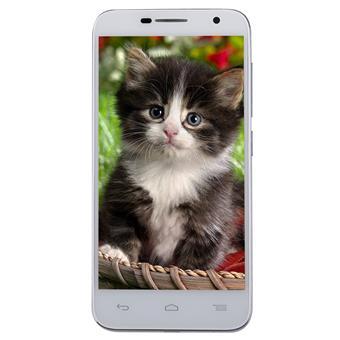 Điện thoại di động alcatel - 6016X Cloudy