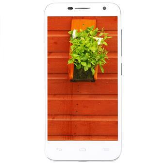 Điện thoại di động alcatel - 6016X silver