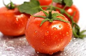 Ngăn rau củ Market Fresh kiểm soát độ ẩm hiệu quả
