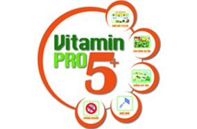 Cung cấp Vitamin cho hoa quả