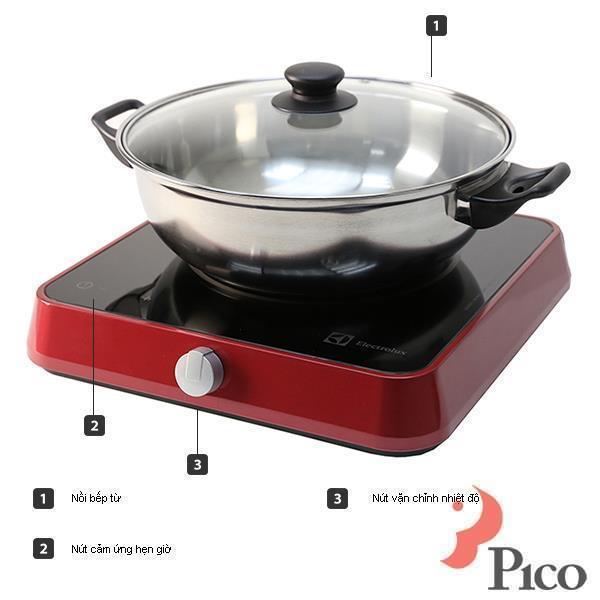 Bếp từ ELECTROLUX ETD32R
