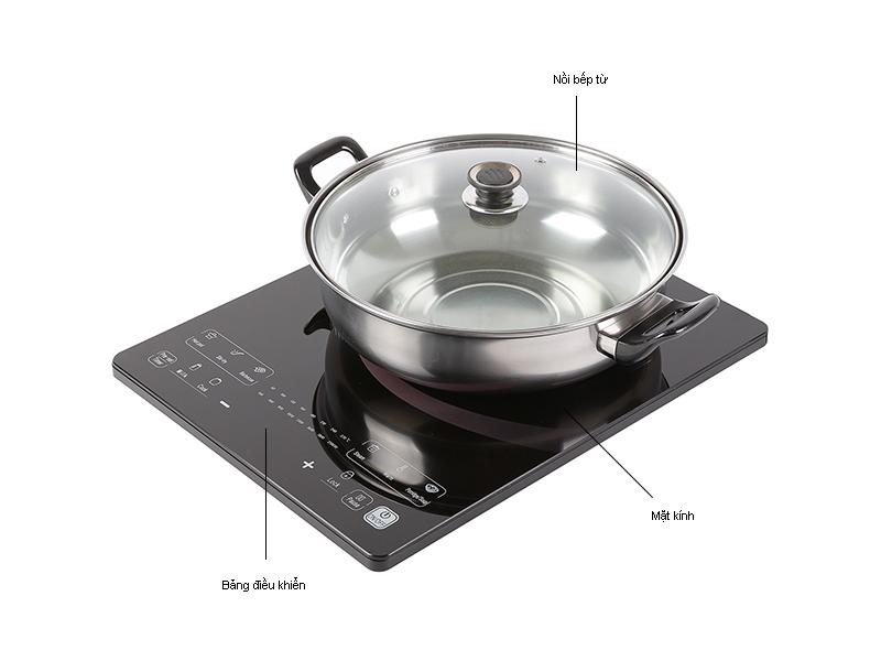 Bếp từ TCL TCH-C214B