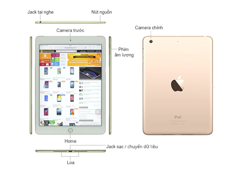 Máy tính bảng Apple iPad Mini 4 - Màu vàng kim