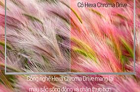 Công nghệ Hexa Chromadrive
