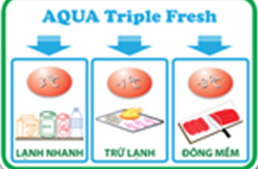 Ngăn Aqua Triple Fresh