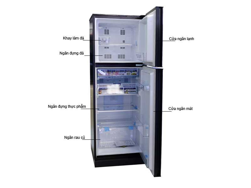 Tủ lạnh Aqua AQRI247BNDC-247L